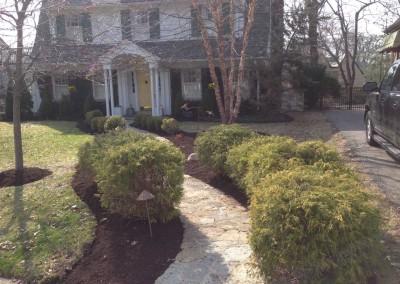 Fall Yard Clean-up