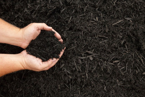 Mulch & Seasonal Planting Commercial Service