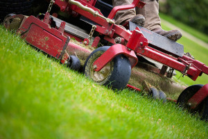 Mowing - Commercial Service