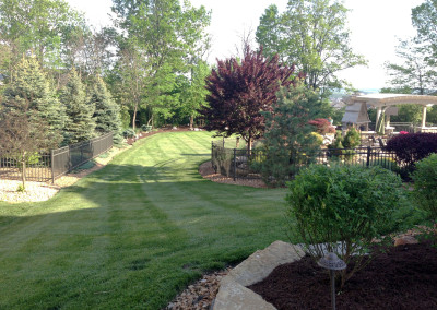 Residential Lawn Care & Mowing