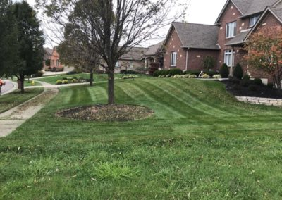 Residential Grass Cutting