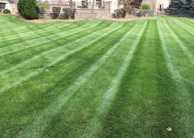 Residential Grass Cutting/Mowing